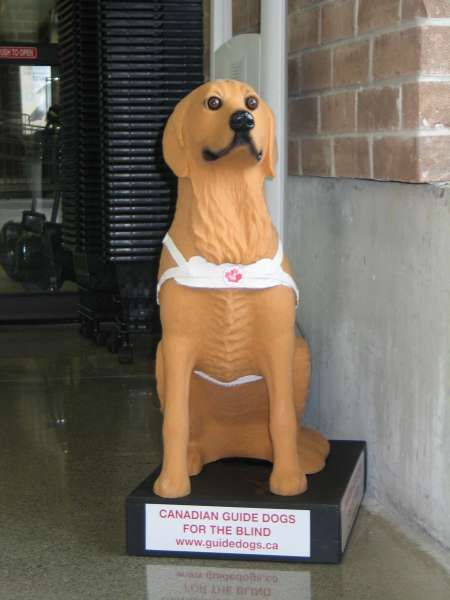 An image of a plastic yellow dog statue for people to put money in