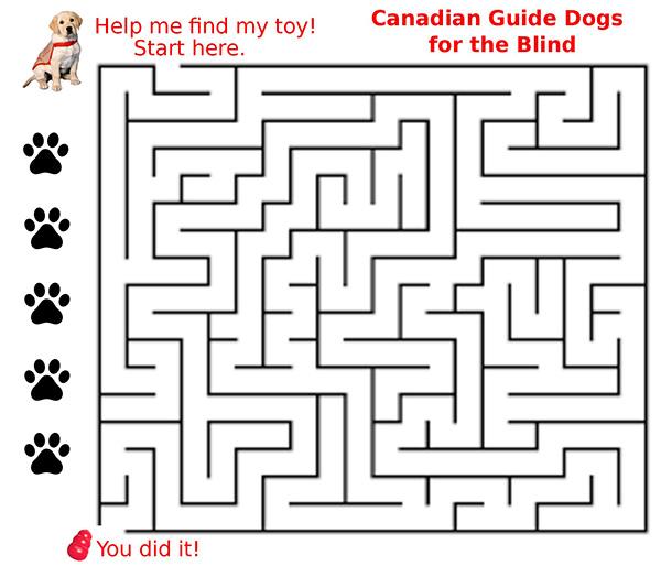 An image of a maze