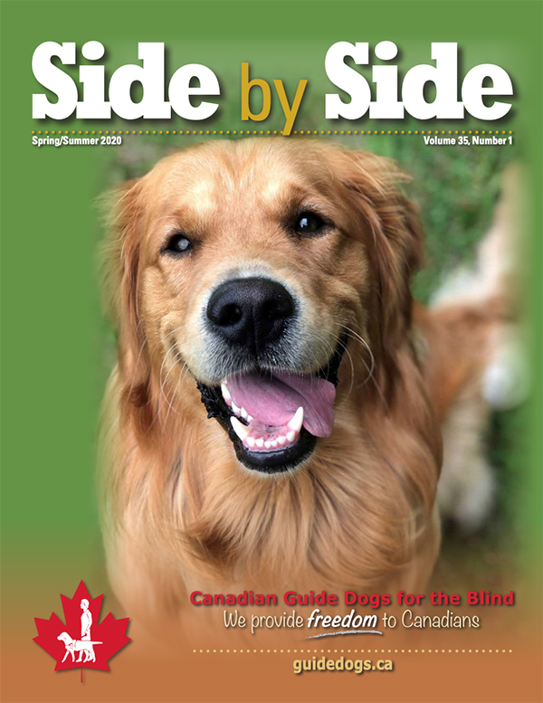 An image of magazine cover of spring summer 2020 featuring a golden retriever