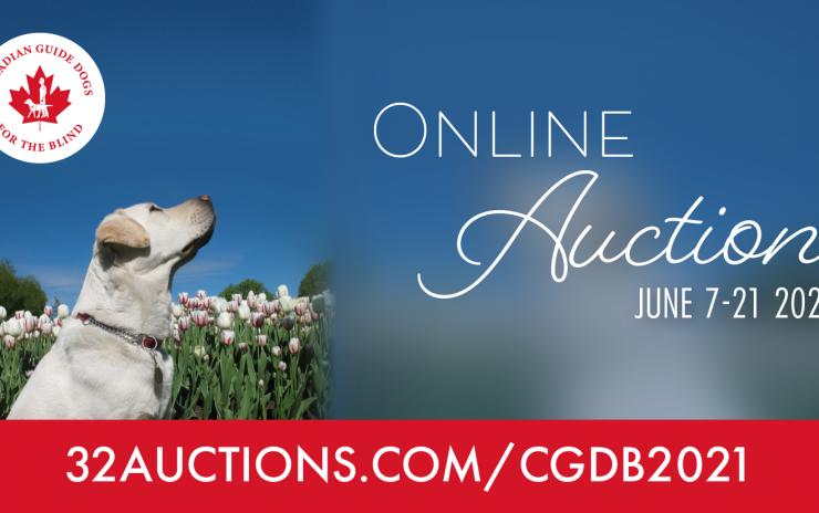 Virtual Auction: 2021